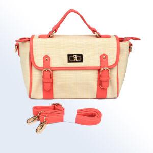 2013 Hottest Fashion Handbag (E23171)