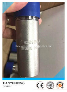 S32750/1.4410 Duplex Stainless Steel Female Bsp TPE Threaded Nipple pictures & photos