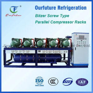 China Factory with Good Quality Bitzer Compressor