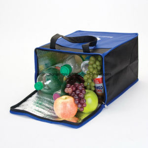 Colorful Cooler Tote pictures & photos