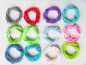 Colorful Elastic Shoelace Lock No Tie Shoelace pictures & photos
