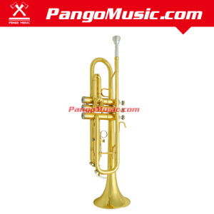 Bb Tone Brass Body Trumpet (Pango PMTR-210) pictures & photos