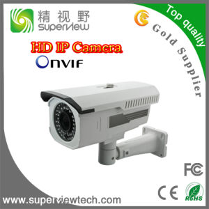 1.3megapixel IR Outdoor HD IP Camera (IPWV404-1.3M)