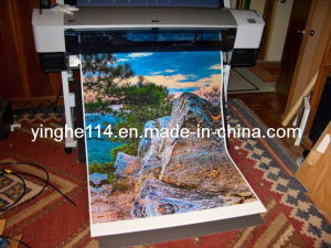 Roll to Roll Canvas for Indoor Inkjet Printing pictures & photos