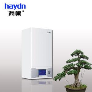 Home Use Gas Boiler