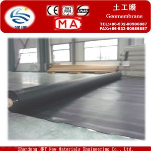 Polyethylene Polythene PE Geomembrane on Sale, Factory Supply Directly pictures & photos