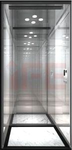 Passenger Lift-Home Lift (IFE-01)
