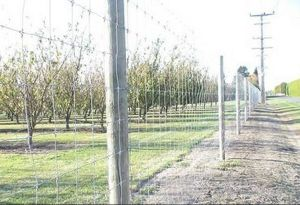 Hot- Dipped Galvanized Grassland Animals Fence/ Bulk Cattle Fence/Cattle Fence/Cattle Fence Post From Anping pictures & photos