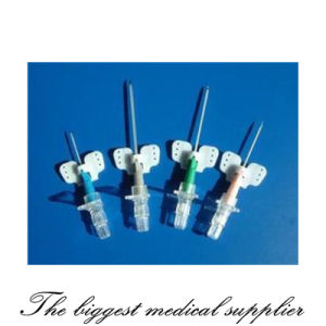 Disposable Medical Sterile IV Cannula Intravenous Catheter with Wing pictures & photos