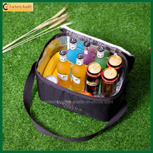 Promotional Outdoor Picnic Lunch Bag Insulated Cooler Bags (TP-CB368) pictures & photos