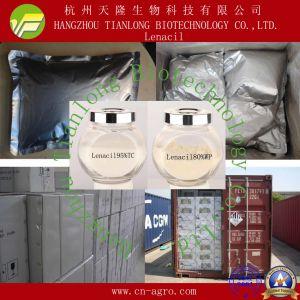 Good Quality Herbicides Lenacil (95%TC, 80%WP, 90%WDG) pictures & photos