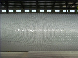 Embossing Roller with Chrome Plating for Pattern Glass pictures & photos