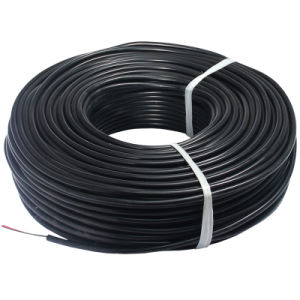Electric Wire Silicone Parallel Cable pictures & photos