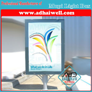 City Information LED Strip Lighting Advertising Display pictures & photos