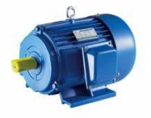Scim 18.5kw 380VAC 3p 38.6A 980rpm 50Hz Electric Motor