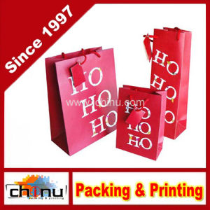 Custom Printed Gift Paper Kraft Bag (220001) pictures & photos