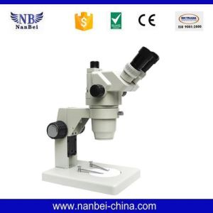 Gl-99t Price of Digital Cheap Electron Microscope pictures & photos