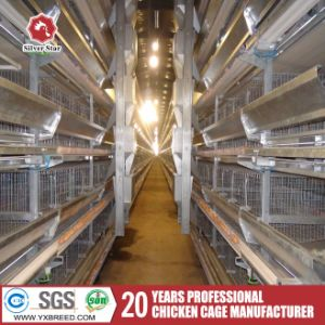 Automatic Poultry Farm Equipment for Broilers and Breeders pictures & photos