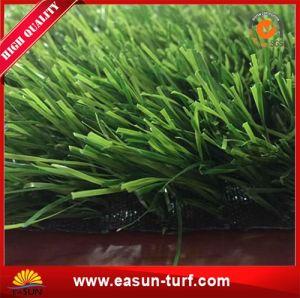 Chinese Manufacturer Artificial Grass Garden Fence for Garden pictures & photos