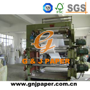 Printing Decorative Tissue Paper Bag for Gift Wrapping pictures & photos