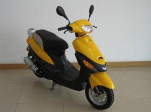 Scooter (JL50QT-18) EEC