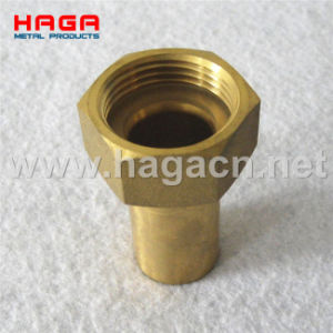 DIN2817 Brass Male Hose Tail with Smooth Hose Shank pictures & photos