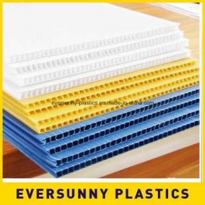 PP Corrugated Sheet, PP Hollow Sheet