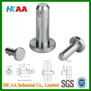Locking Pins with Axial Lock pictures & photos