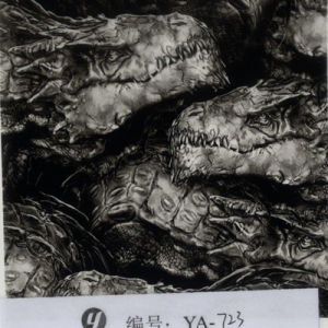 Yingcai 0.5m Width Skull Wall Water Transfer Printing Film Hydrographic Dipping Film pictures & photos