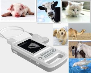 Animal Equipment, Veterinary Full Digital Handheld Ultrasound Scanner pictures & photos