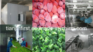 High Quality Berries Vegetable Fruit Fluidized Quick Freezer pictures & photos