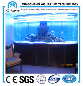 Customized Transparent Large UV Marine Acrylic Fish Tank Price pictures & photos