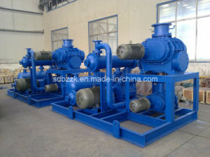 Jzj2b1200-2.2 Liquid Ring Vacuum Pump (package unit, vacuum system)