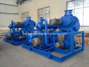 Jzj2b1200-2.2 Liquid Ring Vacuum Pump (package unit, vacuum system)