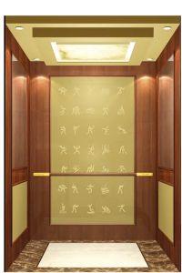 Passenger Lift, Elevator pictures & photos