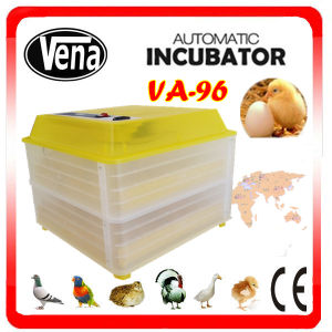 Promotion Sale 96 Egg Incubator Hatching Machine pictures & photos
