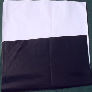 HDPE Plastic Geo-Textile Membrane for Engineering Project pictures & photos