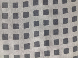 Nylon Cotton Chiffon Burn out in Small Check Pattern pictures & photos