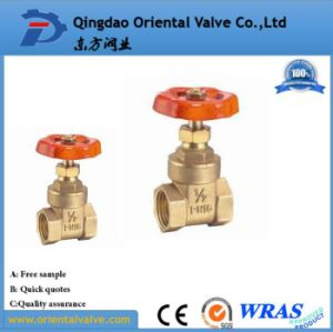 Hot Sale New Products Brass Gate Valve Price Dn20 pictures & photos