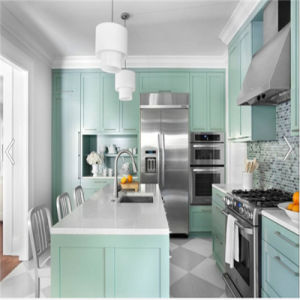 Welbom American Project Kitchen Cupboard pictures & photos