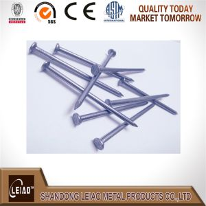 Common Round Wire Nail pictures & photos