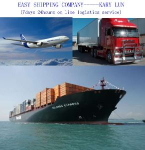 Consolidate Lowest International Transport Service From China to Dubai Clients pictures & photos
