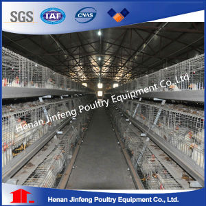 Jaulas Gallinas Se USA En Sudamerica /Semi- Automatic Chicken Cage for Layers pictures & photos