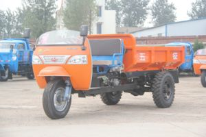 Diesel Waw Dump 3 Wheel Tricycle From China for Sale (WK3B1920105) pictures & photos