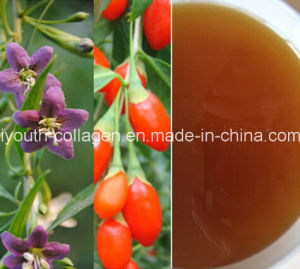 Honey, Top 100%Natural Organic Medlar Honey, Organic Ripe Honey, No Antibiotics, No Pesticides, No Pathogenic Bacteria, Prolong Life, Health Food pictures & photos