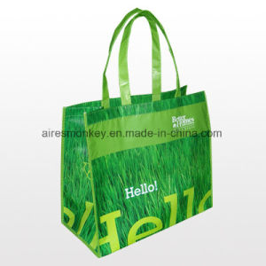 Eco Friendly Lamination Bag pictures & photos
