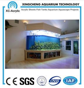 Modern Design of The Aquarium pictures & photos