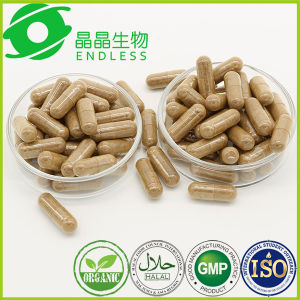 Anti Diabetic Herbal Supplement Cordyceps Sinensis Powder Capsule pictures & photos