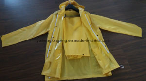 Lady′s Polyester Dots Printing Water Proof High Quality Raincoat, Women′s PVC Raincoat pictures & photos
