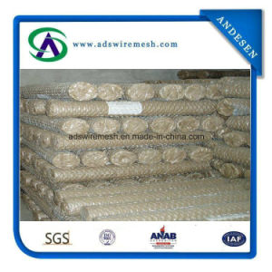 Hexagonal Wire Netting /Chicken Wire Chicken Wire Mesh Used for Stucco Wire Netting pictures & photos